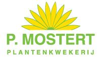 Logo van Plantenkwekerij P. Mostert